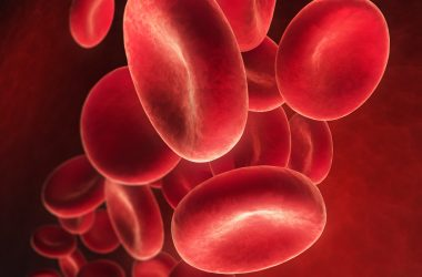 Flowing red blood cells - Erythrozyt 3D illustration