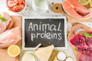 Animal protein sources