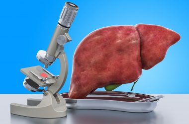 Research and diagnostics of liver disease concept. Laboratory microscope with human liver, 3D rendering |