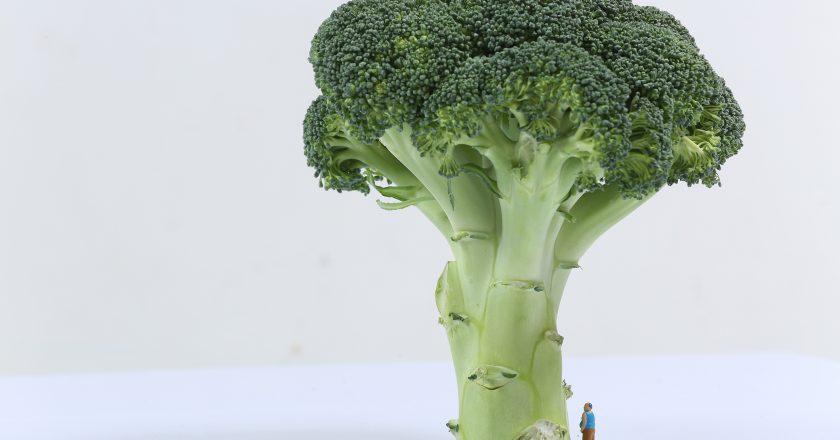 Broccoli |