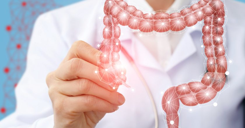 Doctor draws the structure of the colon on a screen. | © Nataliia Mysik | Dreamstime Stock Photos