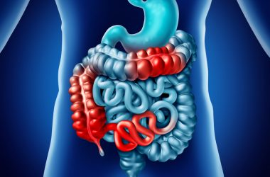 Crohn Disease And Digestion illness | © Skypixel | Dreamstime Stock Photos