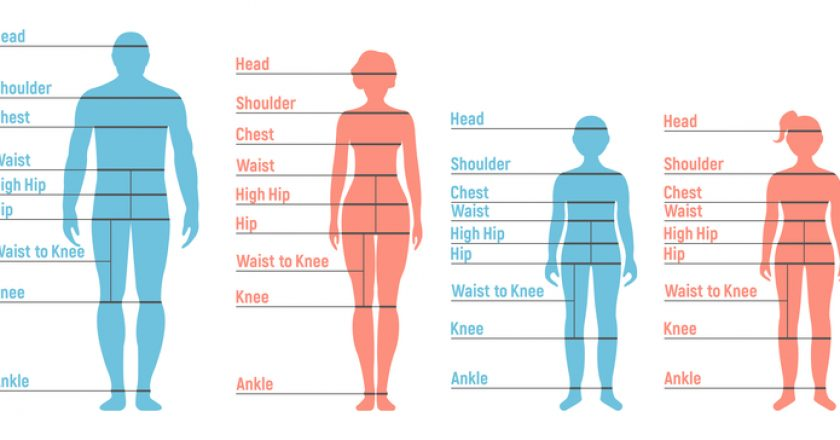 Man, woman, boy and girl Size Chart. Human front side Silhouette | © Alex Andreev | Dreamstime Stock Photos