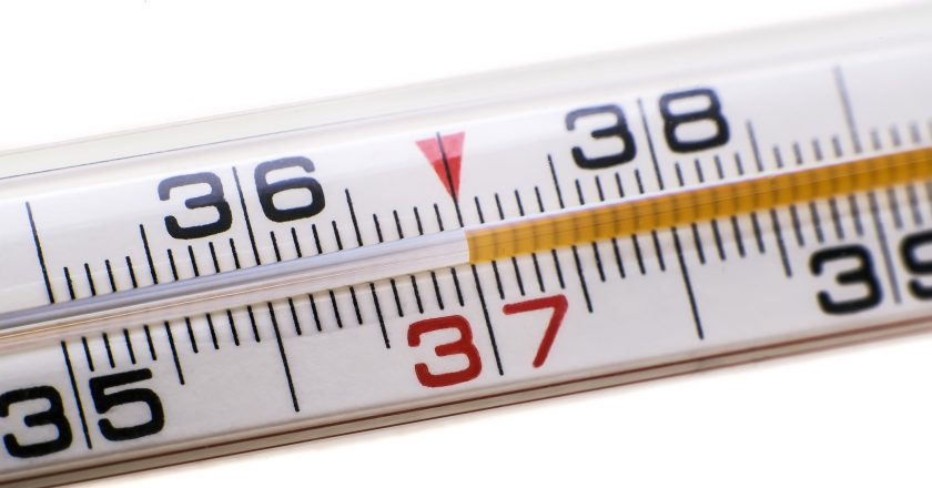 Thermometer |  |