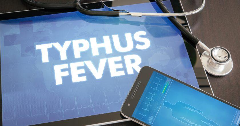 Typhus fever (infectious disease) diagnosis medical concept