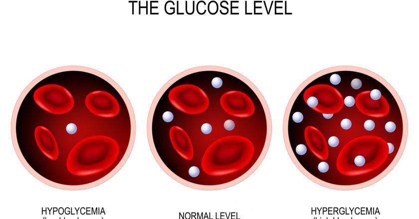 Glucose in the blood vessel. | Επίπεδα γλυκόζης στο αίμα