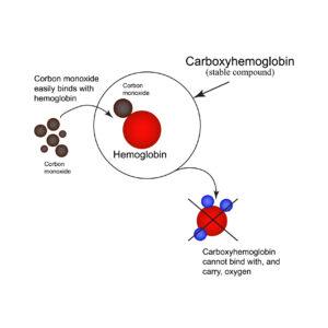 Carboxyhemoglobin. Joining the hemoglobin carbon monoxide. inability to transport oxygen. Carbon monoxide poisoning. Infographics