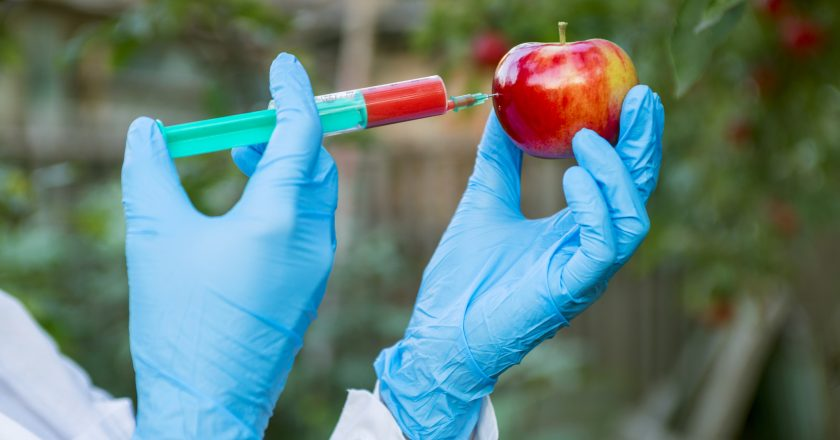 Hand holding apple fruit with syringe with chemical fertilizers of red colour in apple. GMO and pesticide modification. Scientist | φυτοφάρμακα