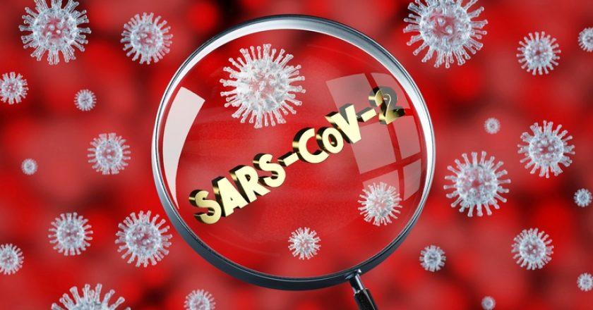 Coronavirus/ SARS-CoV-2/ Covid-19 concept - 3D illustration |