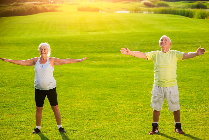 Senior couple does physical exercise.  