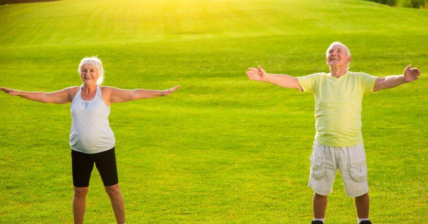 Senior couple does physical exercise. |