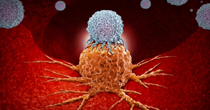Immunotherapy Human Immune Therapy | © Skypixel | Dreamstime Stock Photos