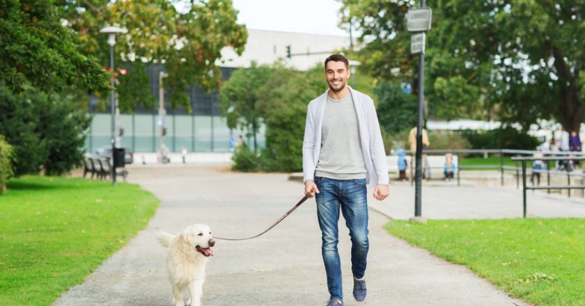 Happy man with labrador dog walking in city | © Dolgachov | Dreamstime Stock Photos