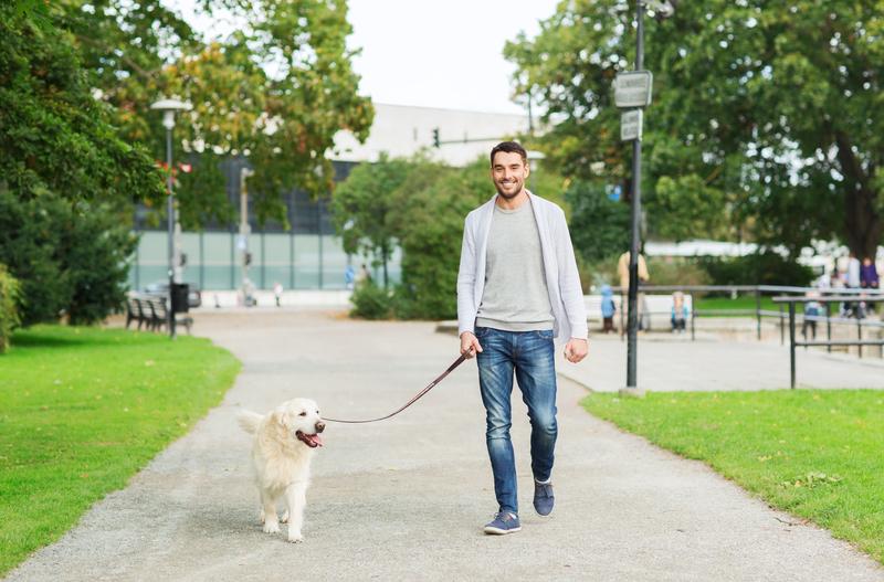 Happy man with labrador dog walking in city | © Dolgachov | Dreamstime Stock Photos