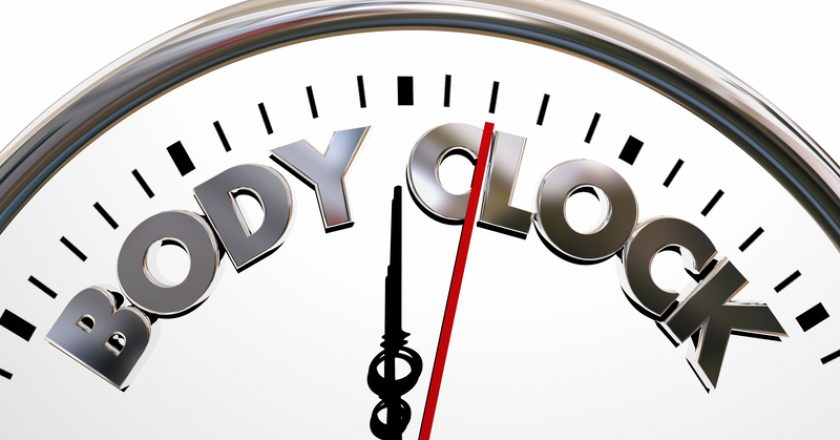 Body Clock Health Wellness Life Longevity Words | © Iqoncept | Dreamstime Stock Photos